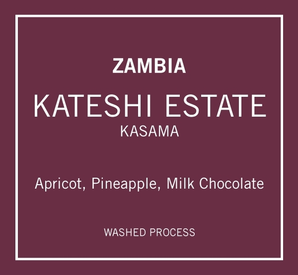 Zambia Kateshi Estate AAA
