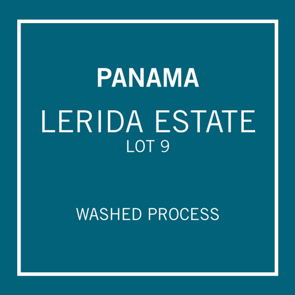 Panama Lerida Estate Lot 9