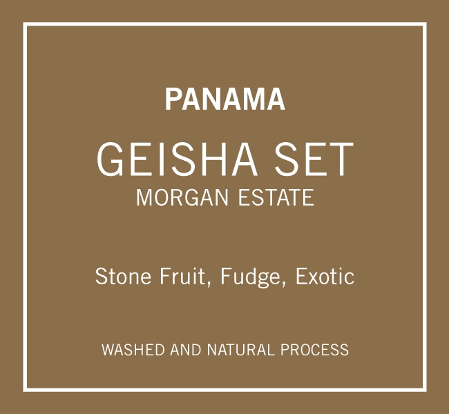 Panama Morgan Geisha Set (Roast: June 26th)